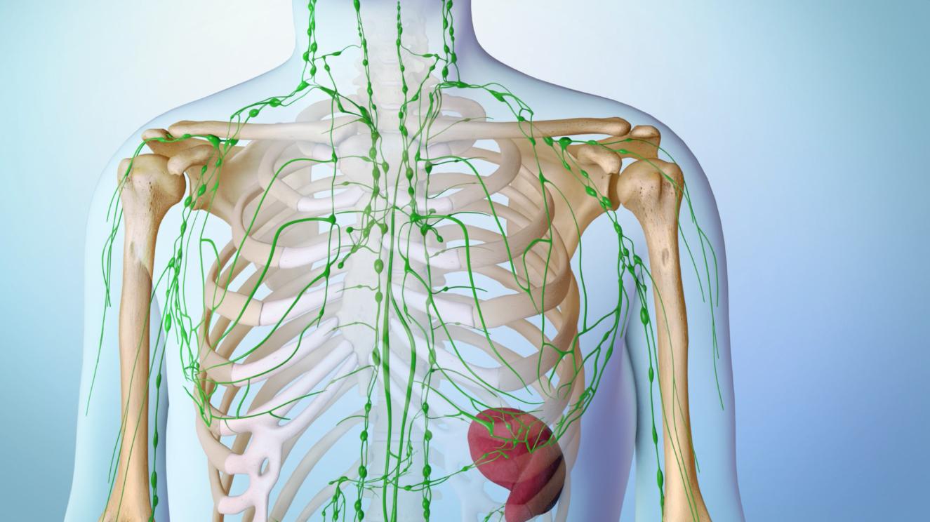 Understanding Lymphoma